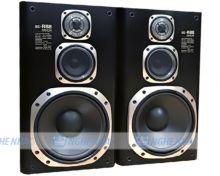 Loa Denon SC-R88